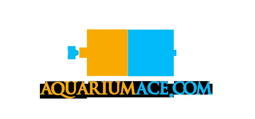 Check out AquariumAce.com for all your coral and aquarium needs